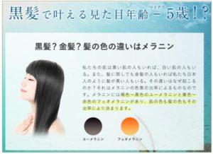 haruシャンプー「黒髪スカルプ・プロ」の特徴と効果