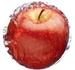 フルーツ幹細胞エキス