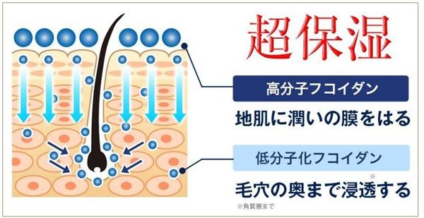ルプルプは、Wフコイダンといって、頭皮の表面と内側からしっかりと潤いを与える