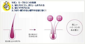 サボンモーヴは髪にハリやボリュウームを与える効果がある